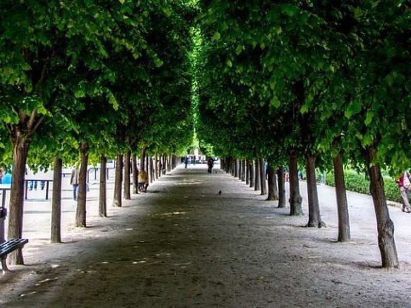 Manolo Blahnik s'installe au Palais-Royal