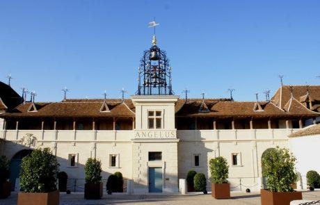 Château Angélus : un Saint-Emilion version bio