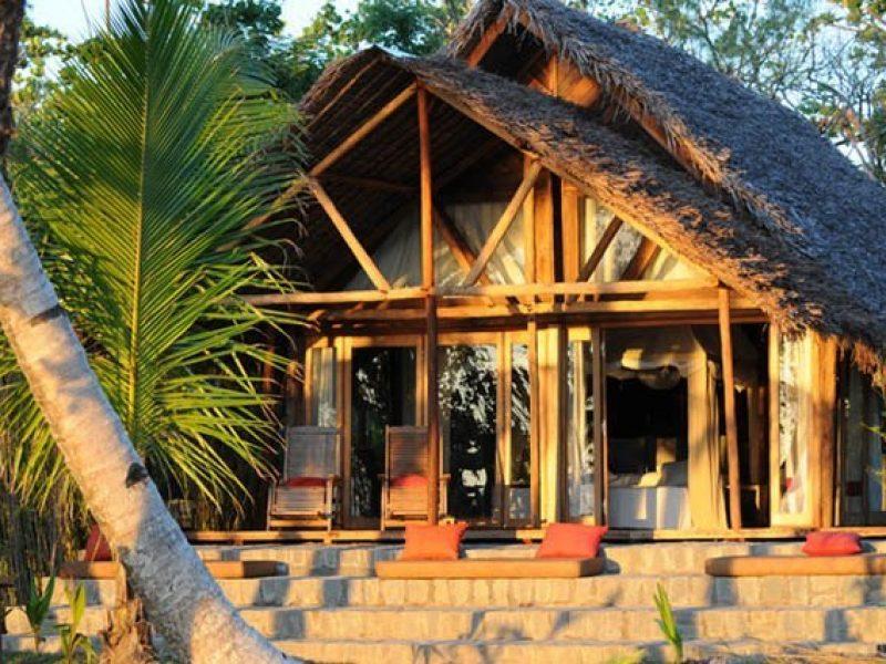 L'écolodge de luxe : le segment qui booste le tourisme