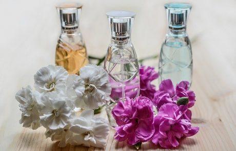 Nino Amaddeo crée une marque de parfums éponyme