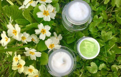 L'Oréal rachète Logocos Naturkosmetik et se lance dans les cosmétiques naturels