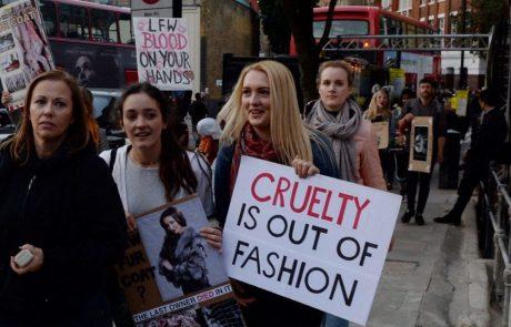 Londres interdit la fourrure pour sa prochaine fashion week