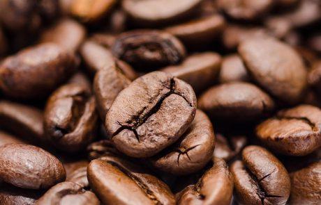 La manufacture du café : le nouveau lieu de rendez-vous d'Alain Ducasse
