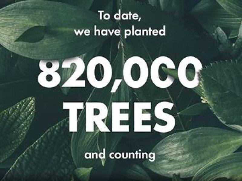 Origins célèbre les 10 ans de son programme de reforestation
