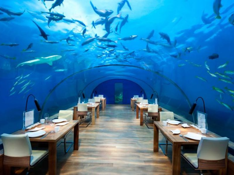 Hôtels sous-marins: l'ivresse ouatée des profondeurs